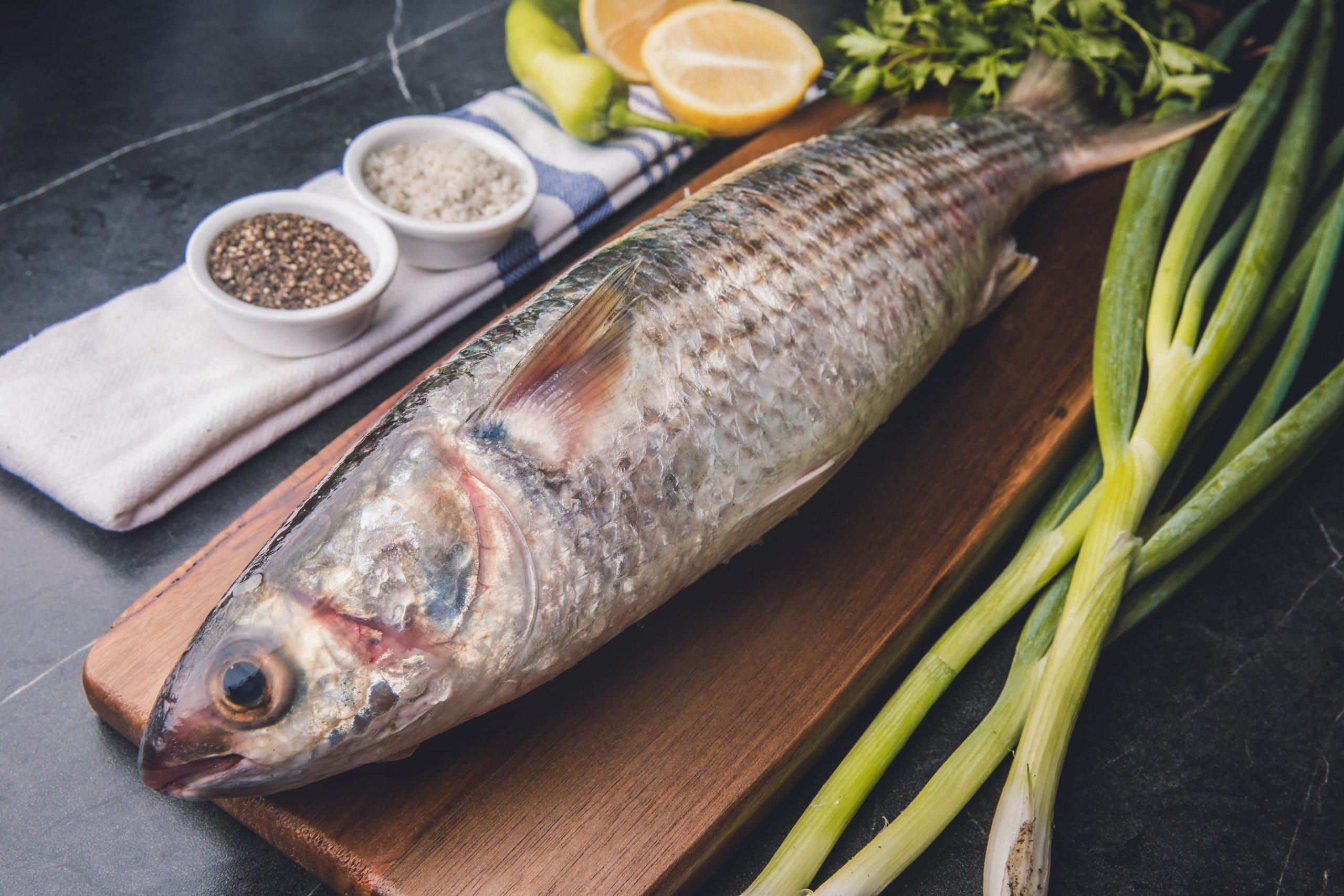בורי גדול חנות דגים טריים של בטשון בתל אביב